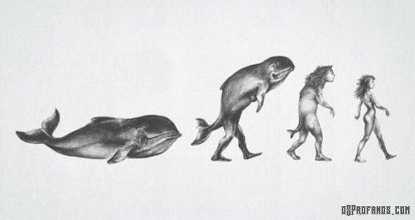 A evolução feminina na historia
