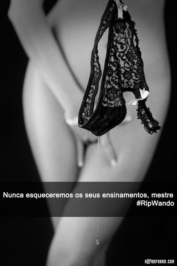 Homenagem ao cantor Wando