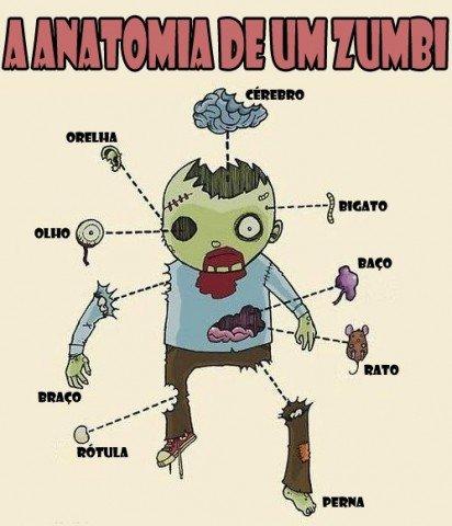 anatomia zumbi