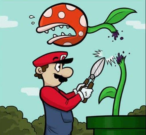 5 profissoes alternativas que poderiam tonar a vida do Mario mais facil1
