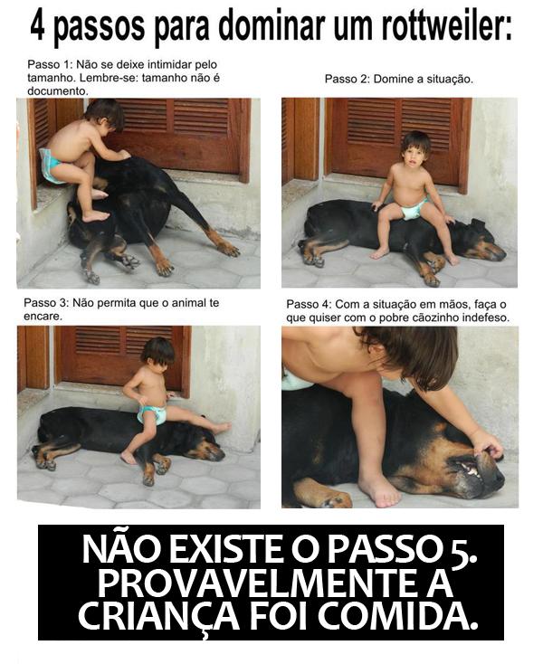 4-passos-para-dominar-um-rottweiler