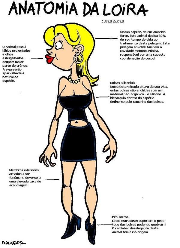 Anatomia da loira