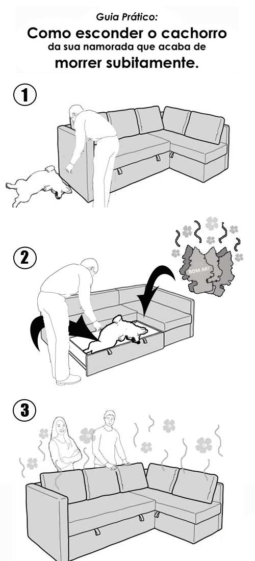 Como esconder o cachorro da sua namorada que acaba de morrer subitamente
