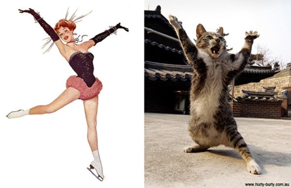 Pin up's e gatos