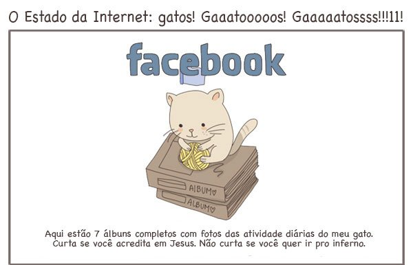 Para que serve as redes sociais, explicadas por gatos