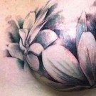 Tatuagens femininas desenhadas em lugares íntimos 311