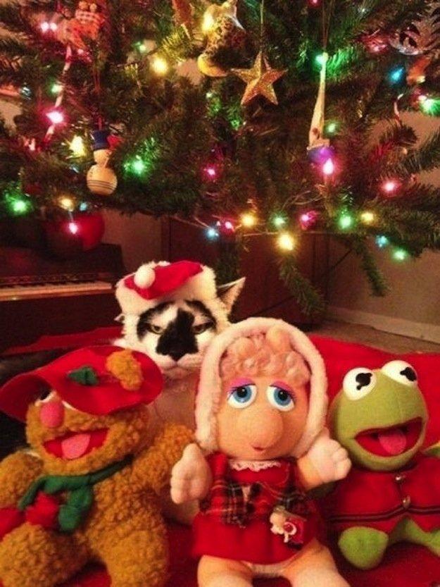 decoraçao de natal