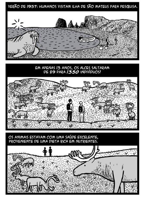 ilha-de-sao-mateus_04