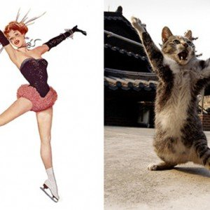 Pin ups e gatos 1
