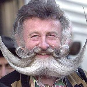 O guia ilustrado da barba