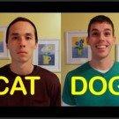 cat_vs_dog
