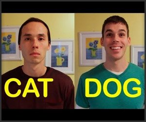 E se os seus amigos agissem como os seus animais de estimação?