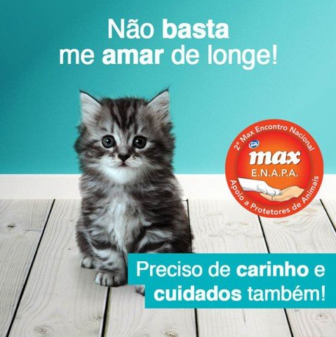 Max em Acao 1