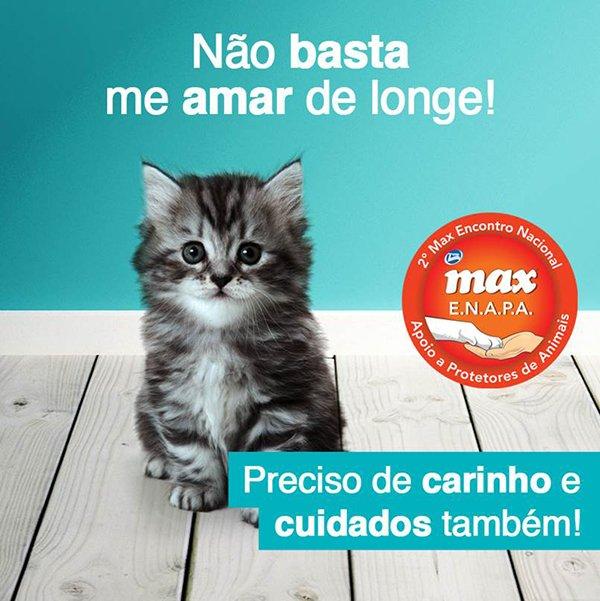 Max em Acao (1)