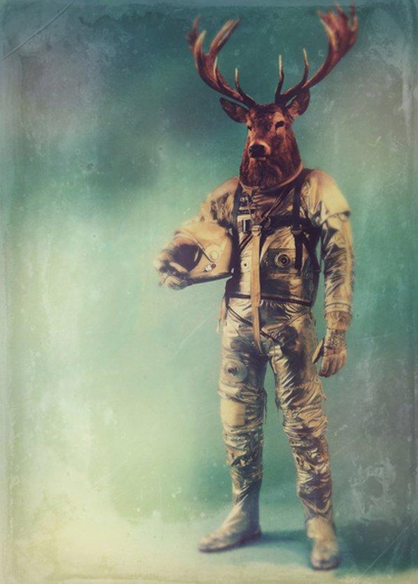 Quando um animal vira astronauta (1)
