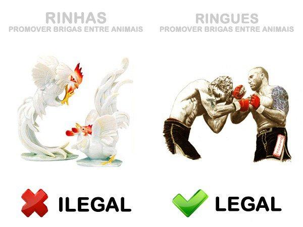 Legal ou Ilegal (4)