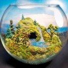 Esculturas dentro de um aquário 3