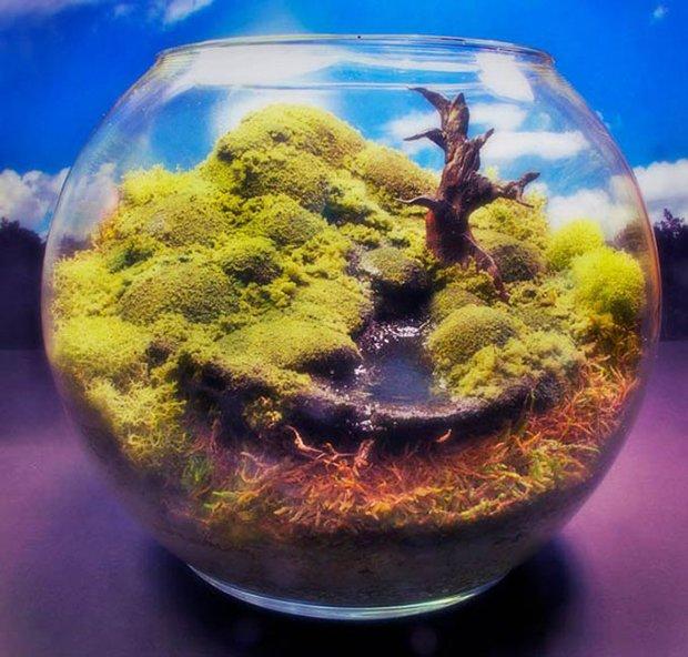 Esculturas dentro de um aquário (6)