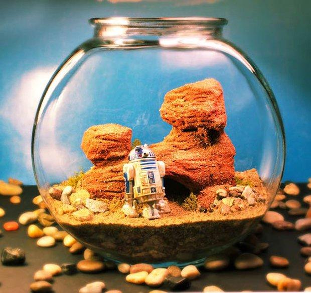 Esculturas dentro de um aquário (8)