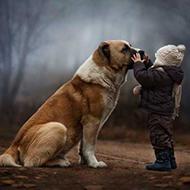 Mãe registra momentos únicos de seus filhos com os animais