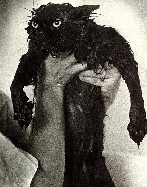 Depois do banho (16)