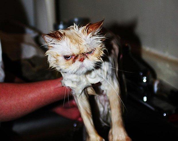 Depois do banho (21)