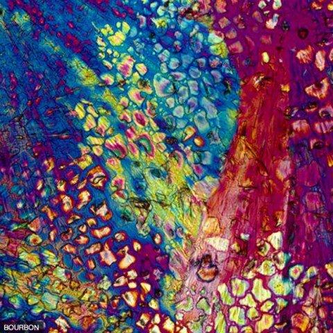 Drinks vistos por um microscópio 3