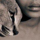 Seres humanos e animais selvagens 13