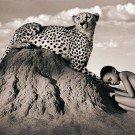 Seres humanos e animais selvagens 15