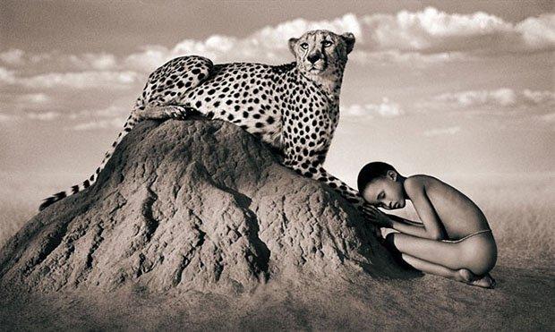 Seres humanos e animais selvagens (15)