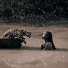 Seres humanos e animais selvagens 19