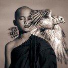 Seres humanos e animais selvagens 7