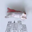 Ilustrações e um bull terrier 2