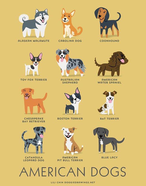 Cachorros do mundo (2)