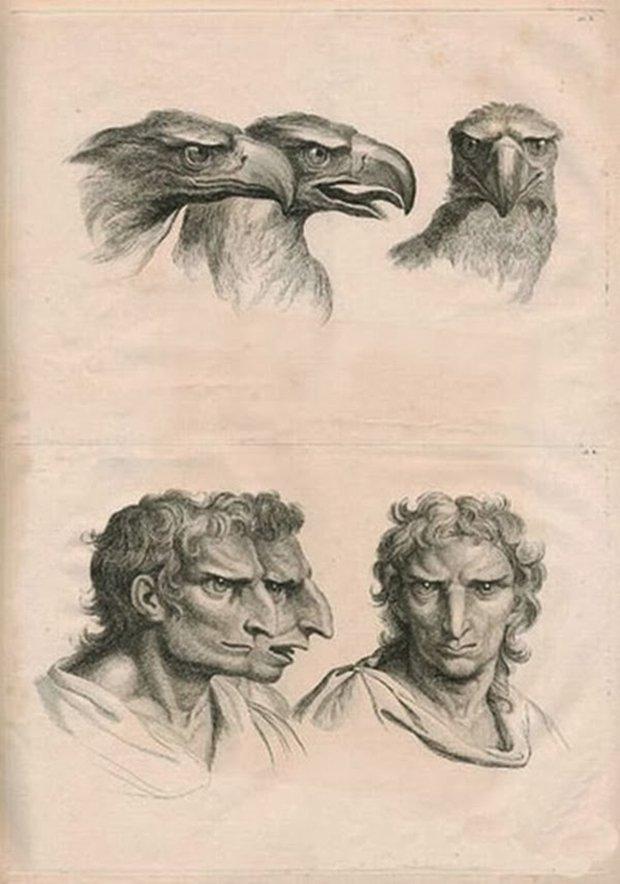 E se o homem tivesse evoluido atraves de outros animais (3)