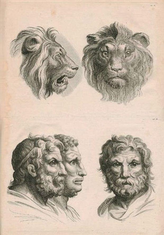 E se o homem tivesse evoluido atraves de outros animais (4)