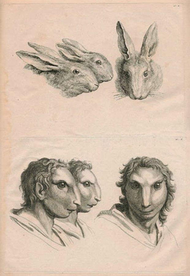 E se o homem tivesse evoluido atraves de outros animais (5)