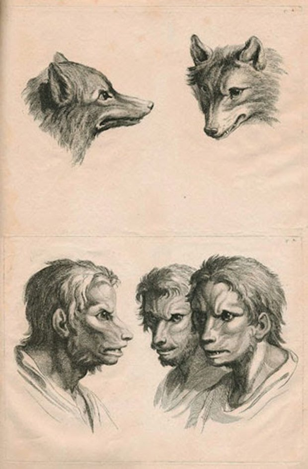 E se o homem tivesse evoluido atraves de outros animais (12)