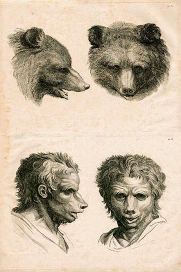 E se o homem tivesse evoluido atraves de outros animais (9)