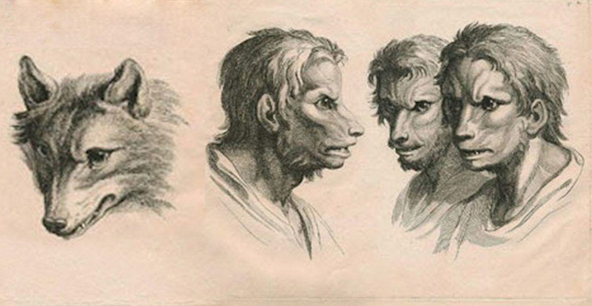 e-se-o-homem-tivesse-evoluido-atraves-de-outros-animais-12