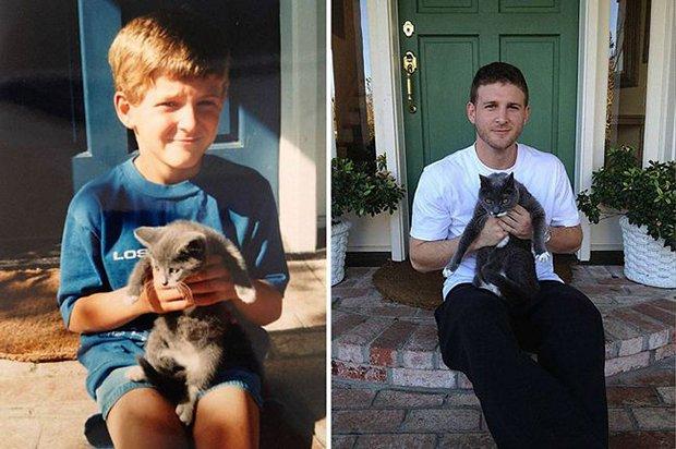 Gatos antes e depois (4)