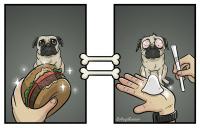 O mundo pelo ponto de vista de um cachorro
