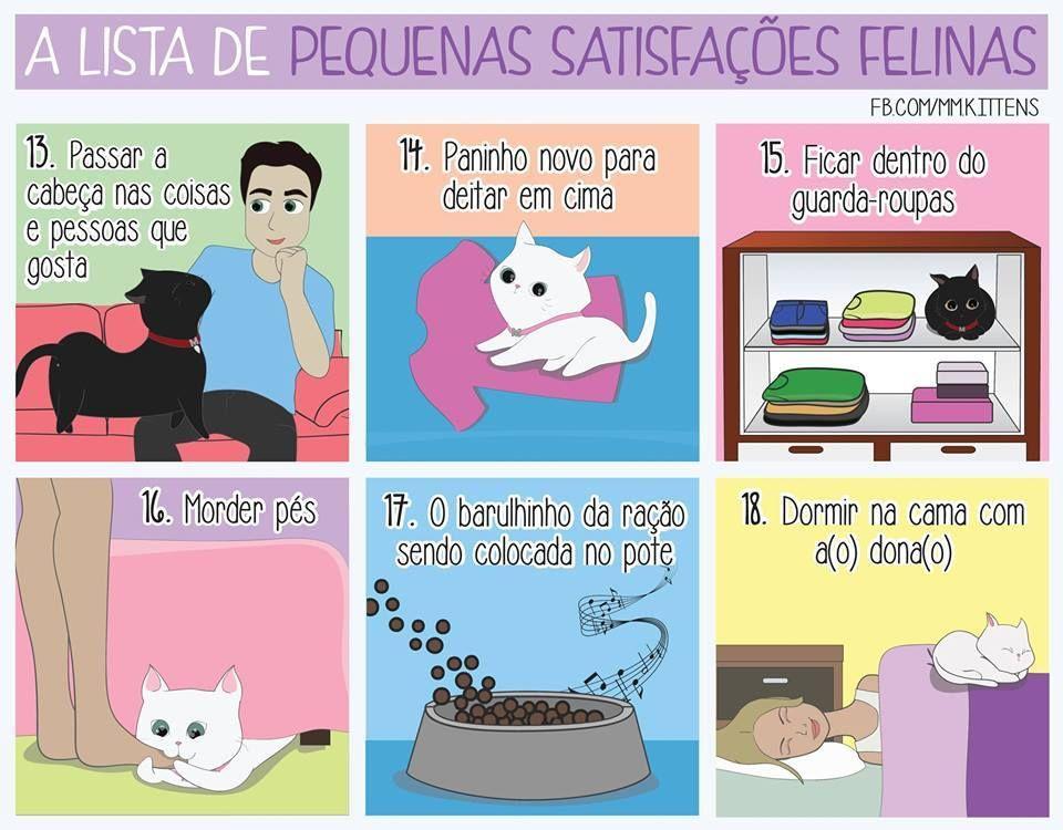 Pequenas satisfacoes felinas 3