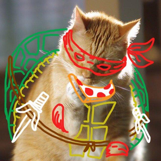 desenhando-gatos-10