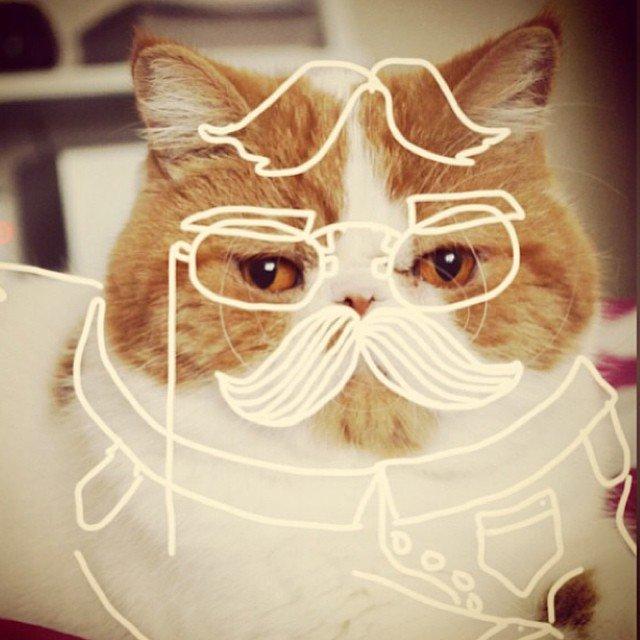 desenhando-gatos-12