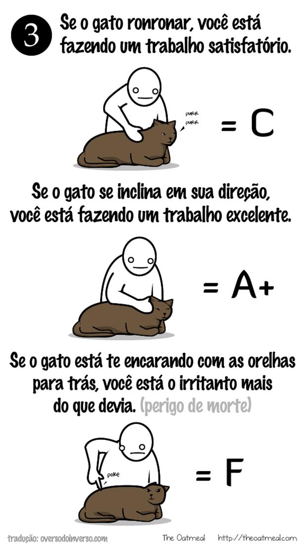 Como brincar com um gato (2)