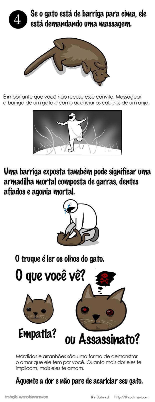 Como brincar com um gato (3)