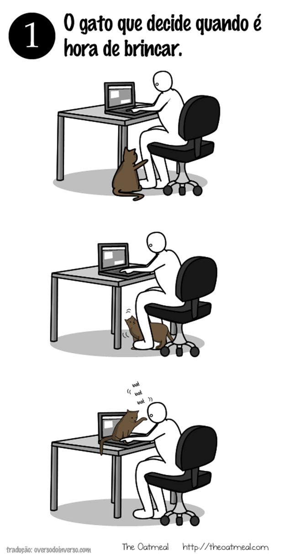 Como brincar com um gato  (5)
