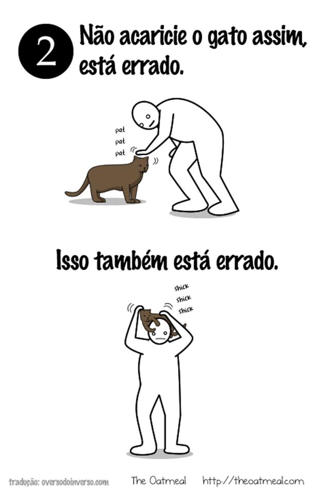 Como brincar com um gato  (6)