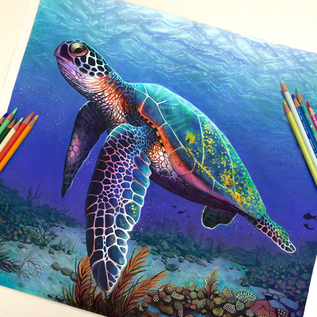 Ilustracoes realistas feitas apenas com lapis de cor (11)